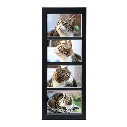 petributes-tribute-frames-multi